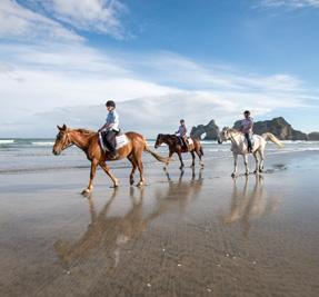 Abel Tasman Horse Trekking