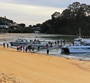 Abel Tasman Sea Shuttles